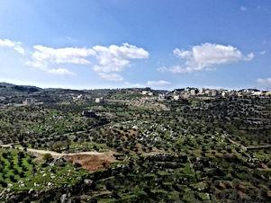 أرض للبيع في حوض الكرسي رقم ( 2 ) منطقة الجندويل غرب عمان مساحة الأرض ( 900 ) متر مربع