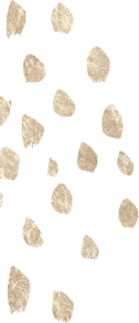 images\template\bg-tribal-dots.png