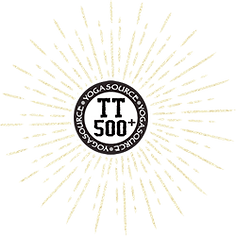 images\template\tt-500-badge.png