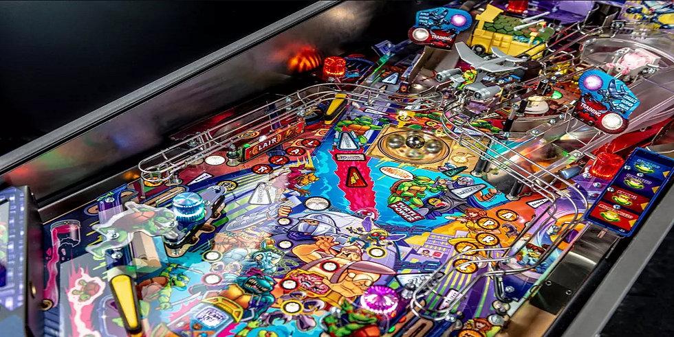 turtles playfield.jpg