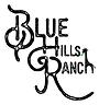 blue hills giraffe white green leaf - Co