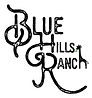 blue hills giraffe white green leaf - Co