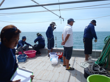 New Paper on Eutrophication and Hypoxia in the Gulf of Thailand