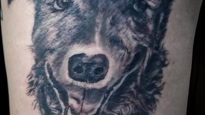 Camille Natural Canvas Tattoo Dog.jpg