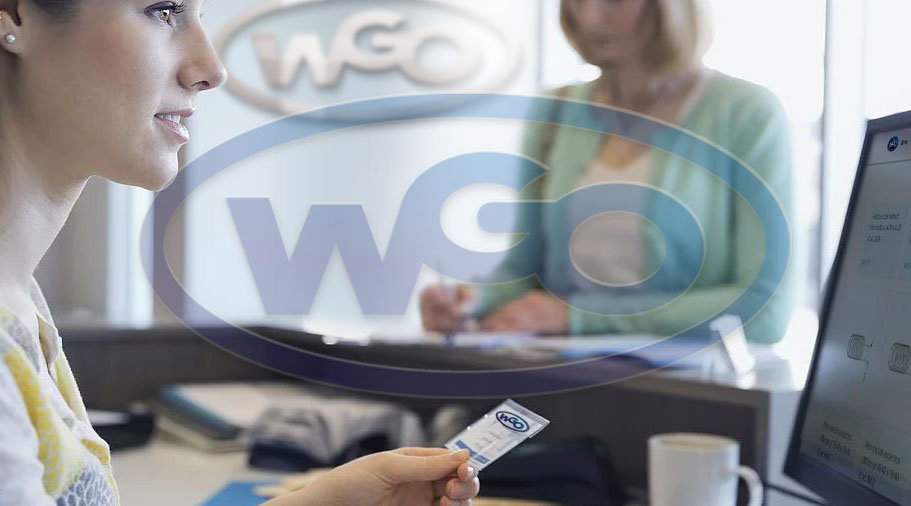 Atendimento WGO.jpg