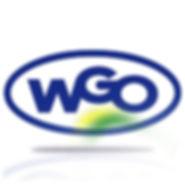 Logo-WGO-Ferramentaria-2019Azul.jpg