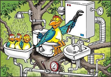 Fugle VVS.jpg