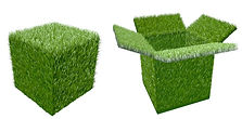 Grass karton.jpg
