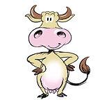 cow skitse.jpg