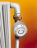 Danfoss thermostat.jpg