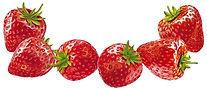 Strawberries 6 stk.jpg