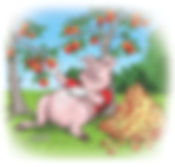 Pig eats apples.jpg