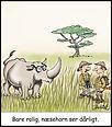 80.Nærsynet næsehorn.jpg