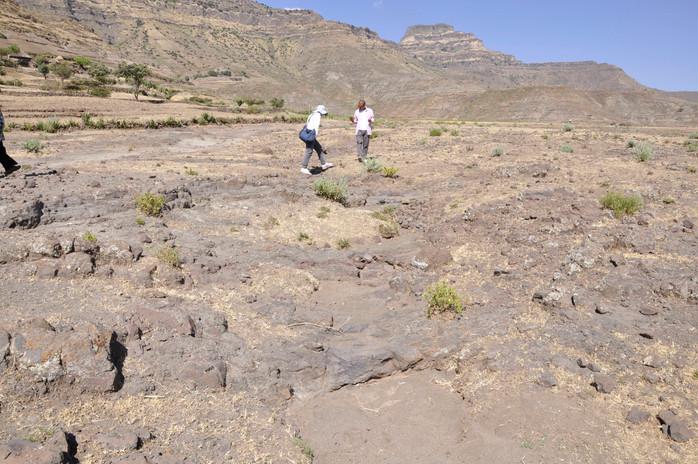 Jacke and Kidane fieldwalking on bedrock (basalt) and shallow rocky soil (Leptosol) near Gännätä Maryam