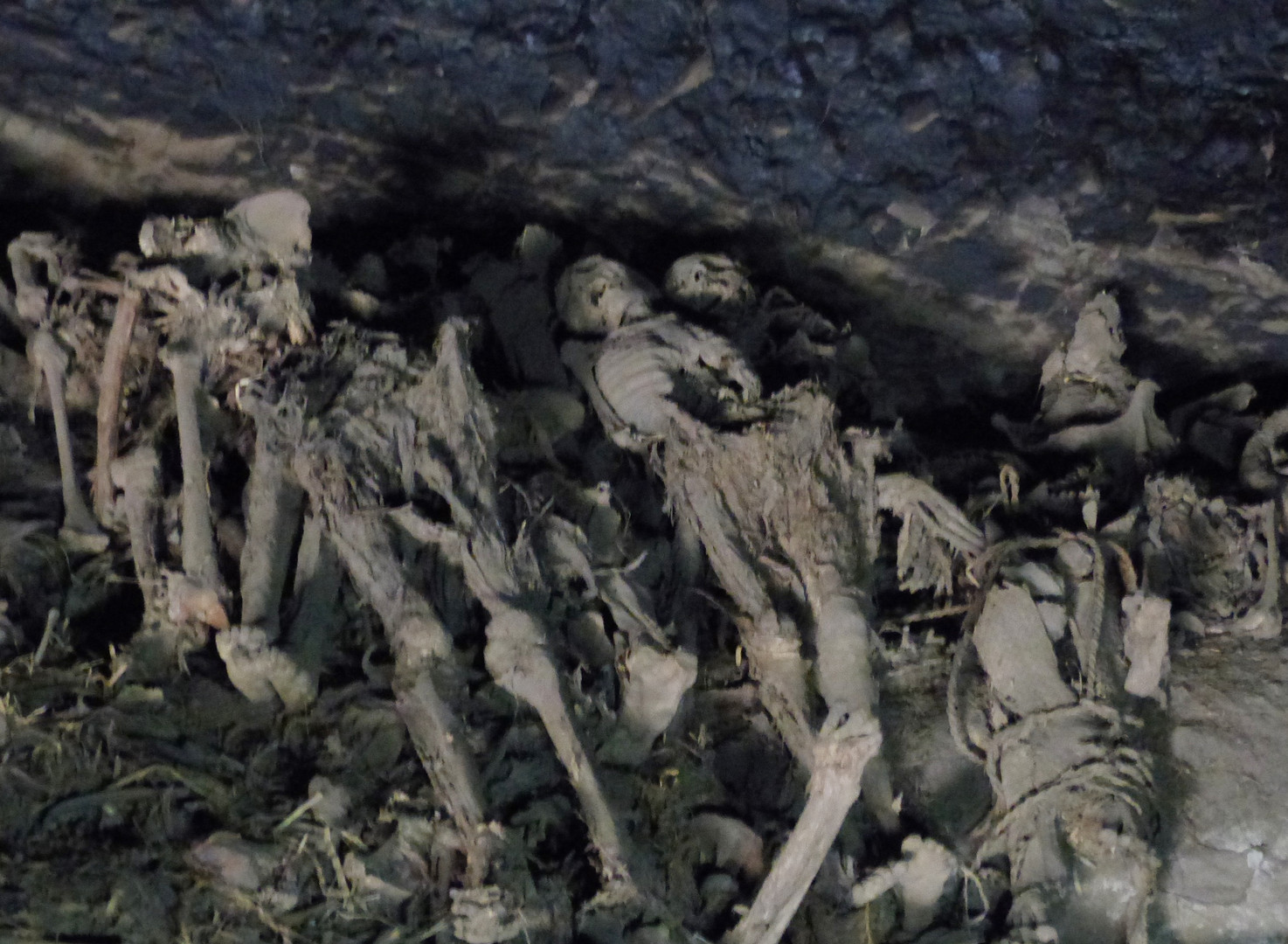 Naturally mummified bodies and commingled remains at the back of Yǝmrǝḥannä Krǝstos cave