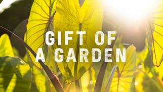 GIFT OF A GARDEN | Hawaii