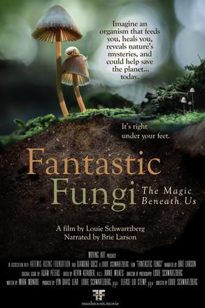 FANTASTIC FUNGI...The Magic Beneath Us