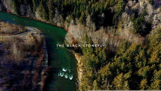 THE BLACK STONEFLY