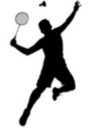 23650466-badminton-player2.jpg