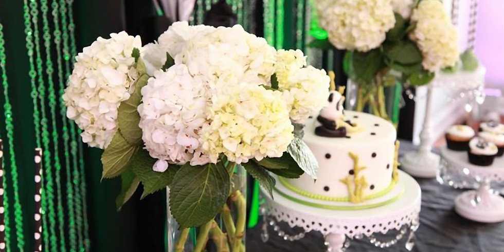 """Luxe Academy 