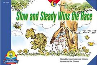 Slow and Steady Wins the Race