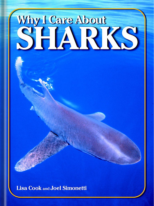 Why I Care About Sharks