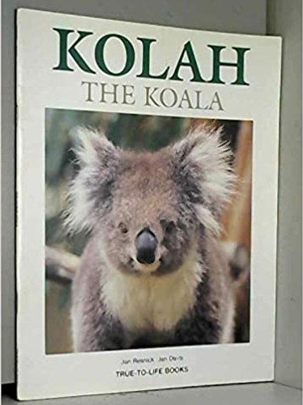 Kolah the Koala