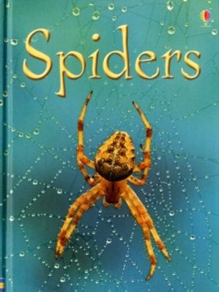 Usborne - Spiders