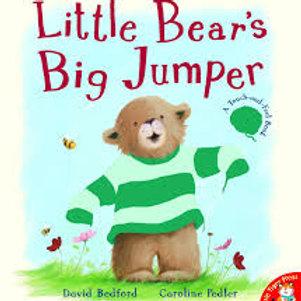 Little Bear's Big Jumper