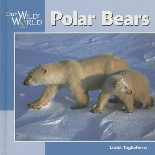 """Our Wild World """"Polar Bears"""""""