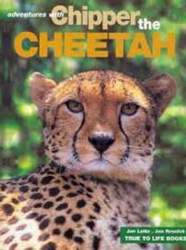 The Adventures with Chipper the Cheetah