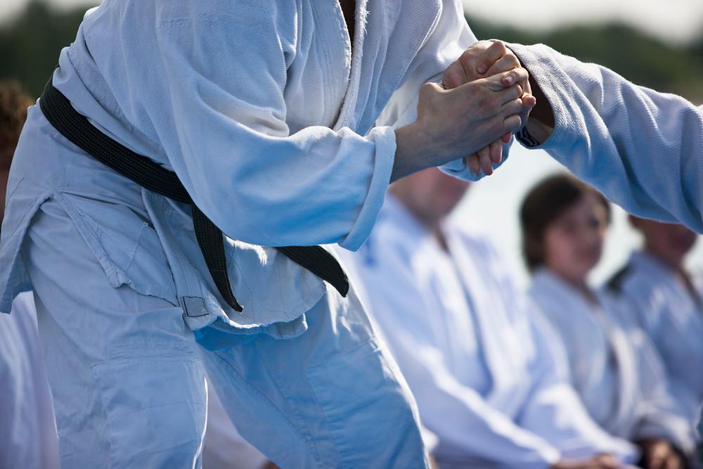 Wrist lock martial arts