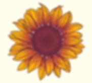 Sunflowers copy.jpg