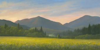 Adirondack Loj Road - Goldenrod and Wildflowers