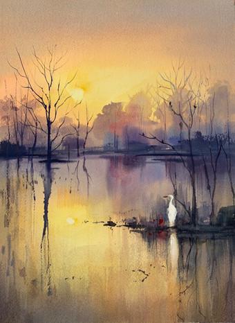 Wetlands Marsh