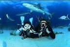 se marier Bahamas, se marier en plongée