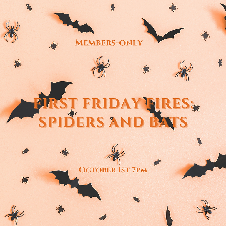 First Friday Fires: Spiders & Bats