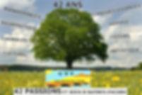 arbre-composé.jpg