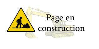 Page-en-construction1.jpg