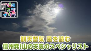 長野朝日放送でヤマテンの取り組みが取り上げられました。