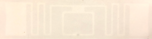 Xerafy Gamma Label