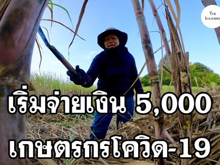5,000 บาท รัฐเริ่มเยียวยาเกษตรกรช่วงโควิด-19