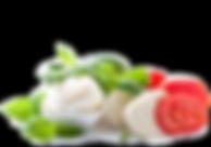 Mozzarella (2).png