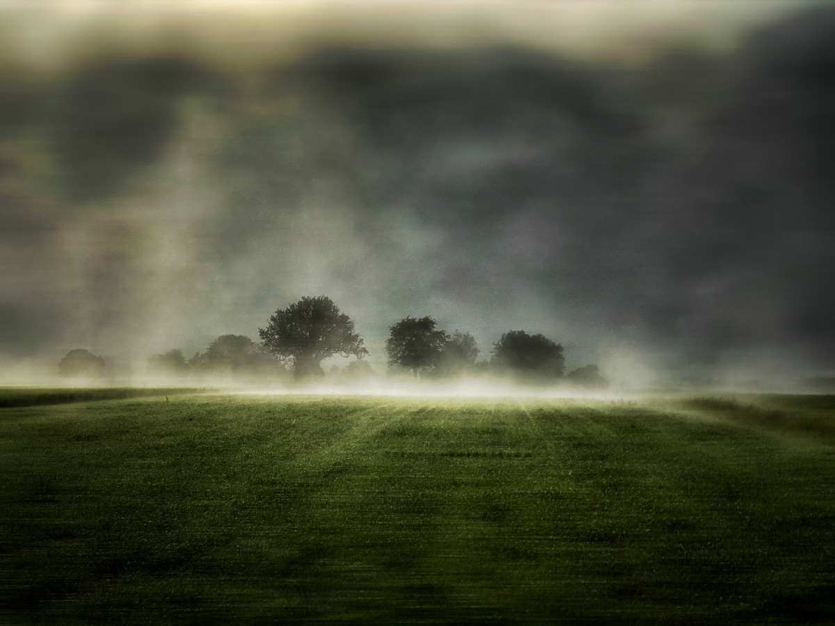© Hardy Richter