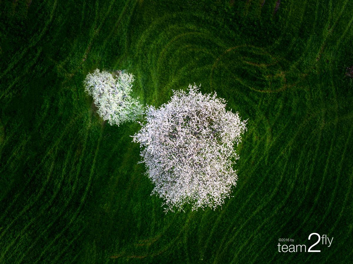 © team2fly – LUFTBILDFOTOGRAFIE