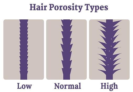 hair-porosity.jpg
