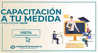NFtecapacita (1).jpg