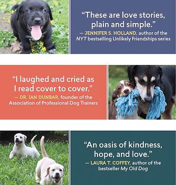 Amazon.com 101 Rescue Puppies One Family