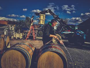 Barrels at Stony Run Winery.jpg