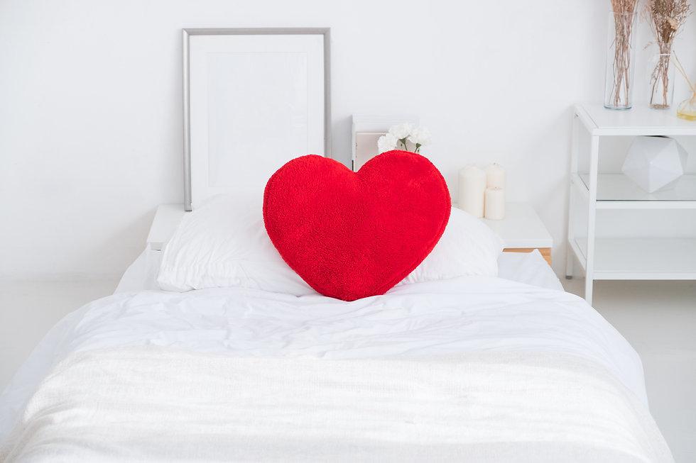solidarité hôtels le coeur